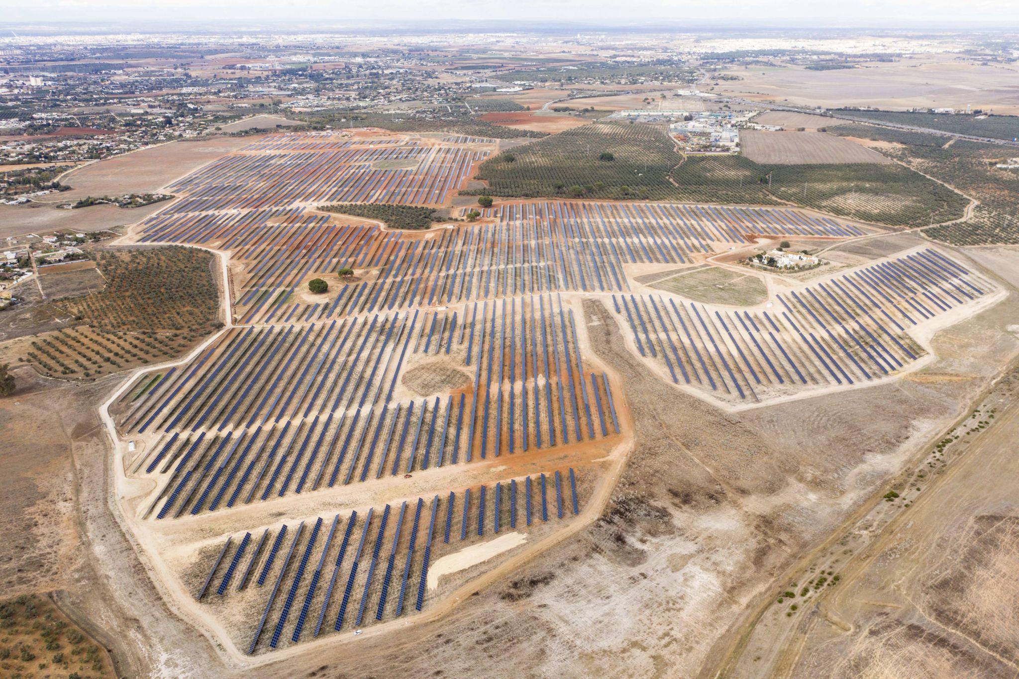 Planta Fotovoltaica Zafra